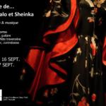 Affiche Kalo et Sheinka - sept 2016